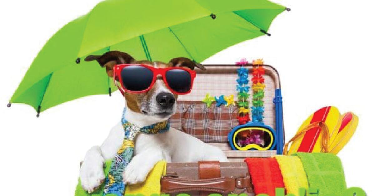 Vacanze bestiali! L'estate di Bau e Miao
