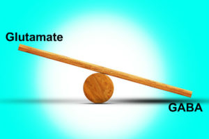 equilibrio gaba glutammato
