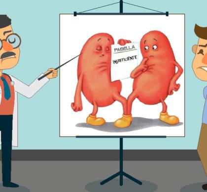 I reni non servono solo a far pipì!